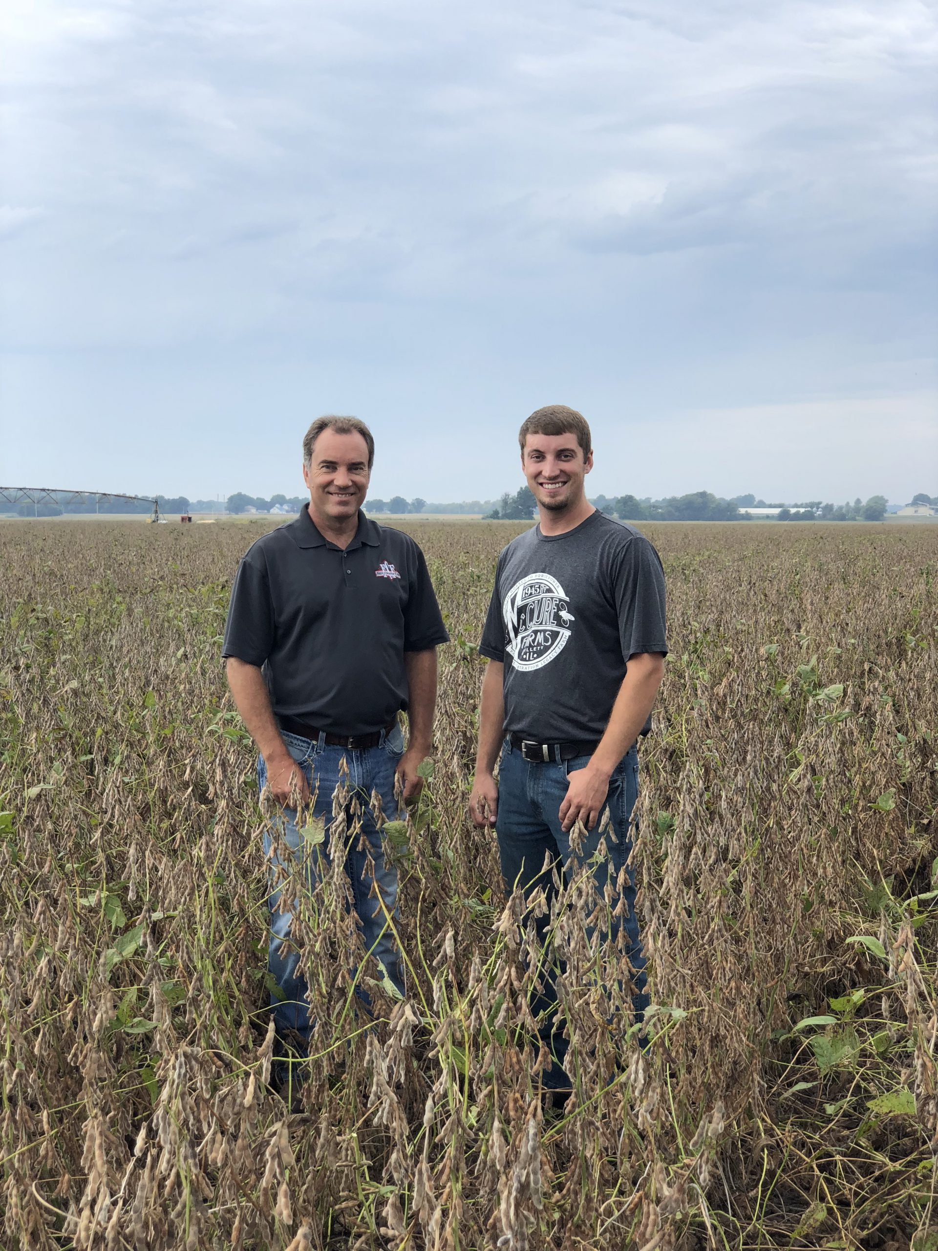 YMP 7 | Higher Soybean Yield