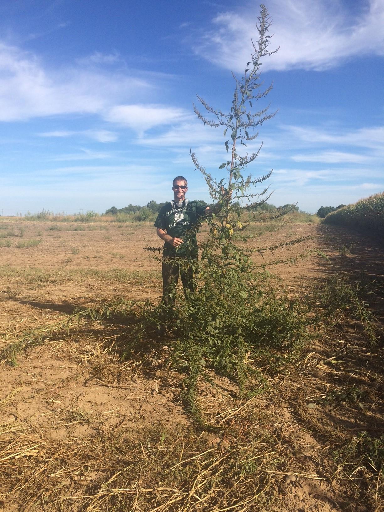YMP 12 Joey Heneghan | Weed Management